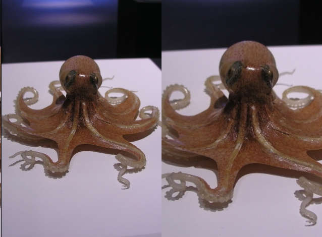 octopus stereo